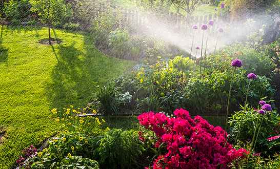 3 Interesting Irrigation Facts