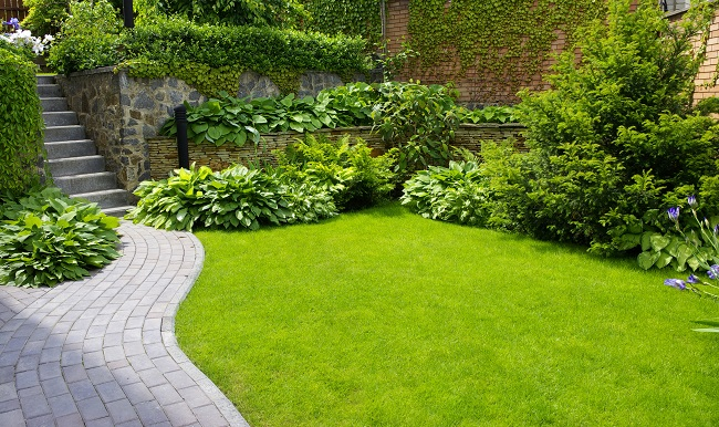 Save Money This Summer With Landscape Irrigation Services