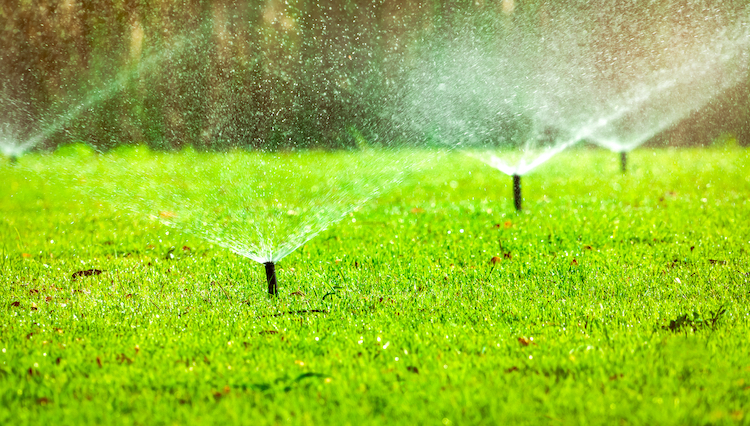Finding a Qualified Team for Commercial Irrigation Services