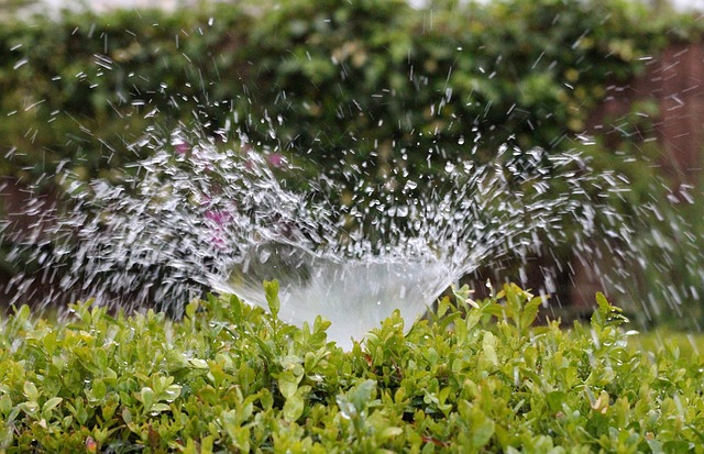 Water-Saving Tips for Landscape Irrigation Systems